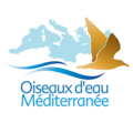 Mediterranean Waterbirds