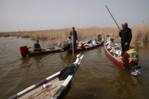 Iraki marshes